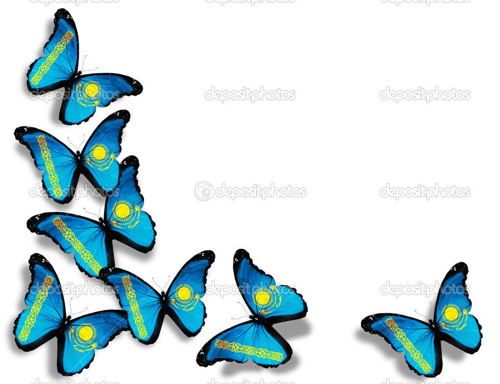 Kazakhstani flag butterflies, isolated on white background