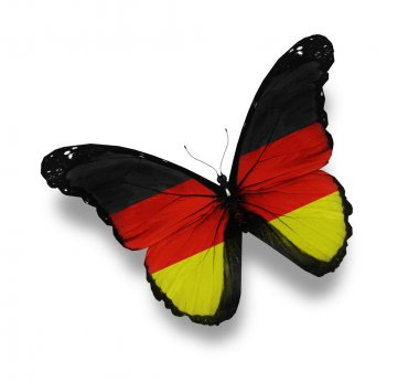 German flag butterfly, isolated on white
