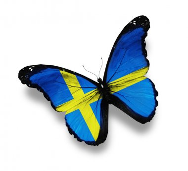 Swedish flag butterfly, isolated on white