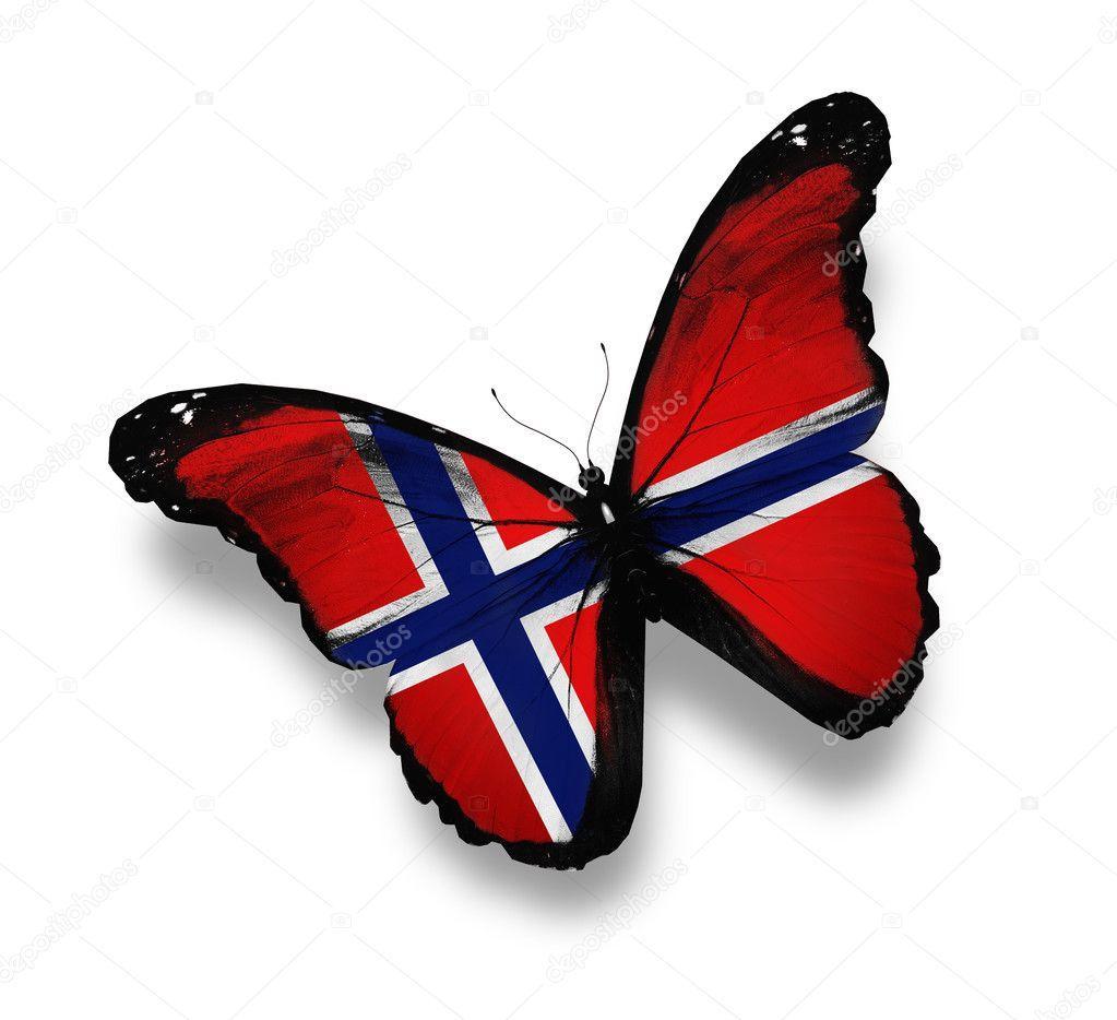 Norwegian flag butterfly, isolated on white