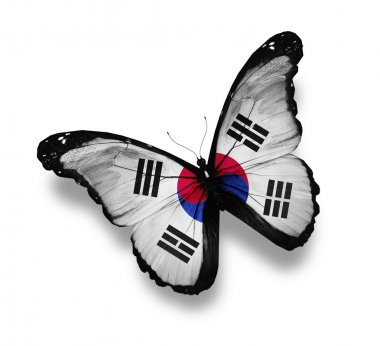 Flag of South Korea butterfly, isolated on white