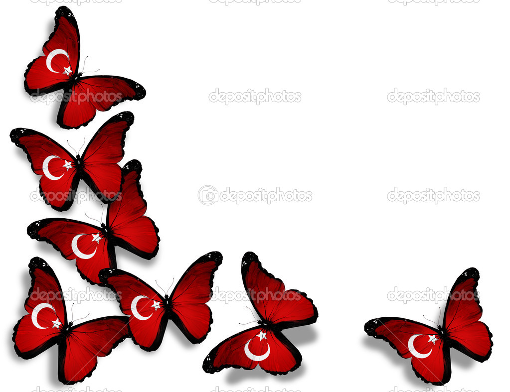 Turkish flag butterflies, isolated on white background