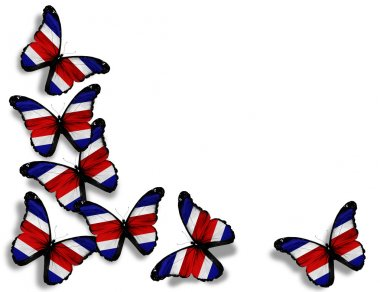 Costa Rica flag butterflies, isolated on white background