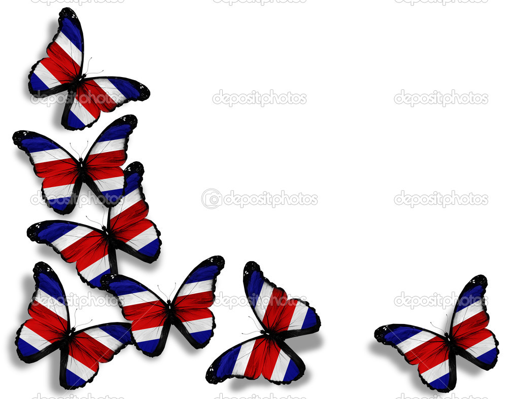 Costa rica flag butterflies isolated on white background stock costa rica flag butterflies isolated on white background photo by suntiger biocorpaavc Gallery