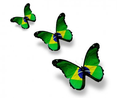 Three Brazilian flag butterflies, isolated on white