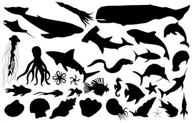 Collected marine life vector silhouettes