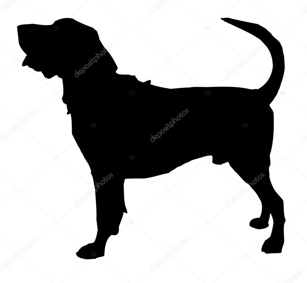 Vector De Rottweiler Archivo Imagenes Vectoriales C Zaharch2 9709934