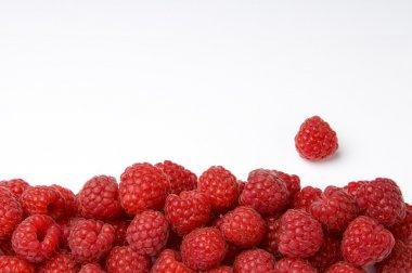 Raspberry Frame