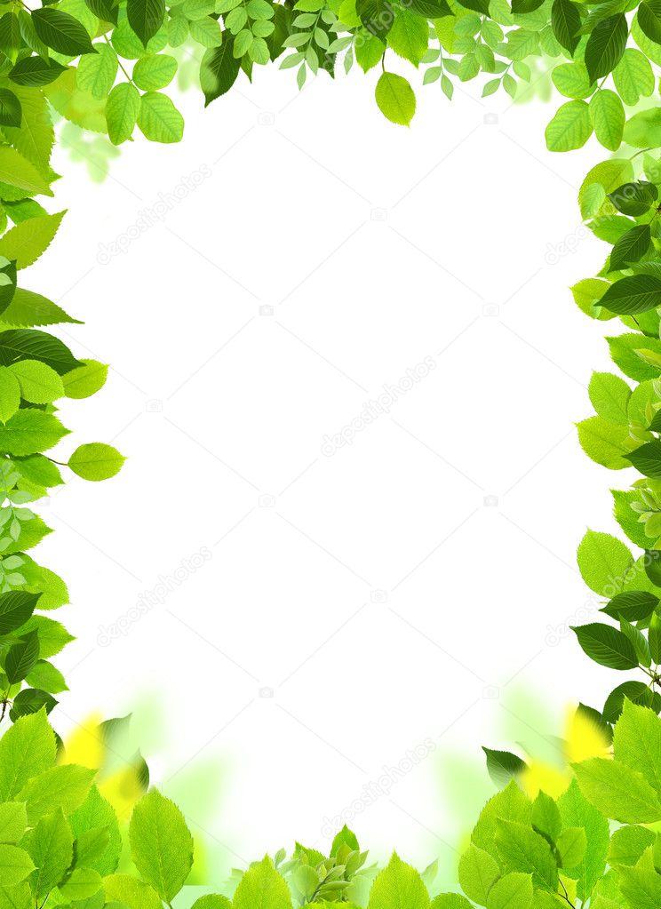 natürliche Rahmen und Vorlage — Stockfoto © grafikerayx #8591582