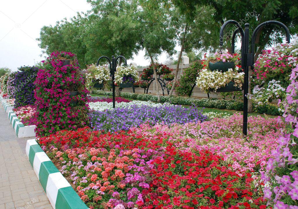 Jardines Colgantes De Al Ain Foto De Stock C Danielphoto 10718472