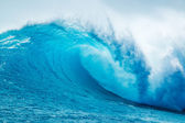 Fotografie krásný modrý oceán vlna