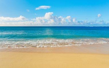 "Картина, постер, плакат, фотообои ""пляж и тропическое море"", артикул 8486144"