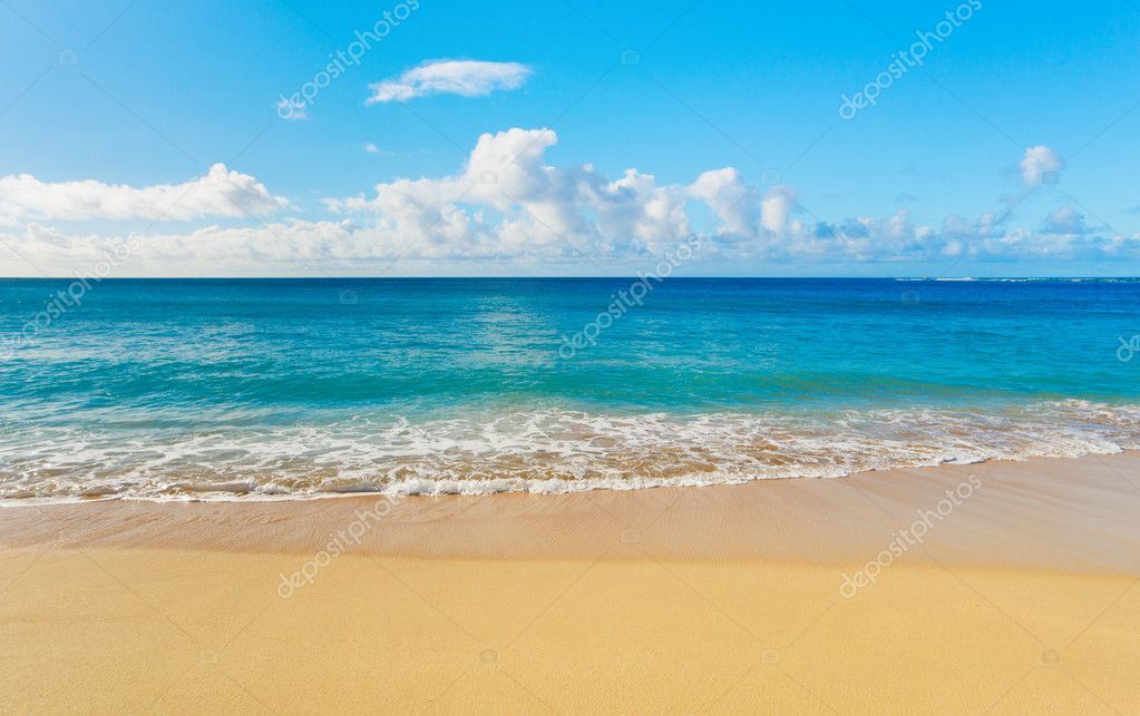 Фотообои Beach and tropical sea