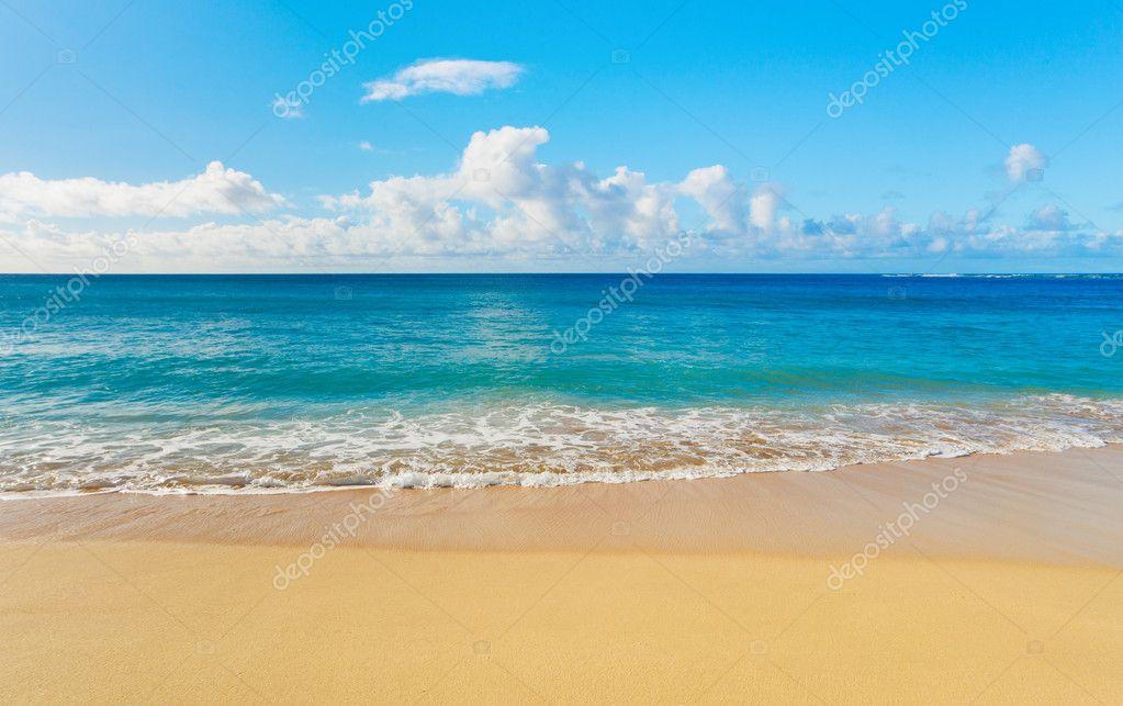 Фотообои Пляж и тропические моря