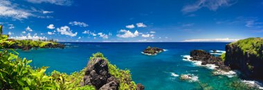 Tropical Ocean Coastline in Hawaii