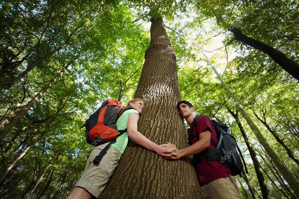 """Képtalálat a következőre: """"fa környezetvédelem"""""""