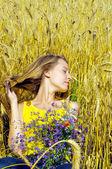 Gyönyörű szőke lány veszi napozni arany mezőben