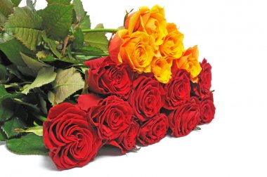Luxury bouquet roses