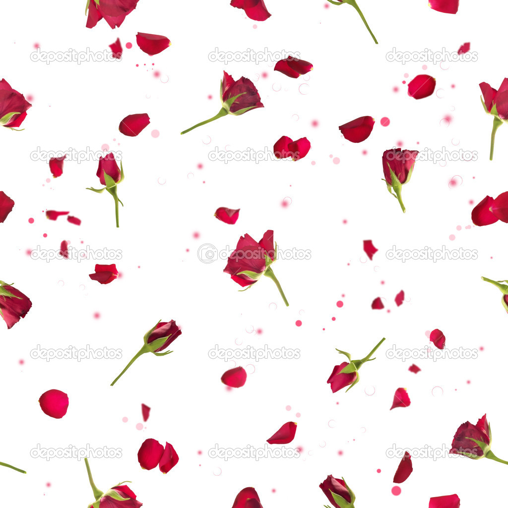 Seamless roses and petals in red