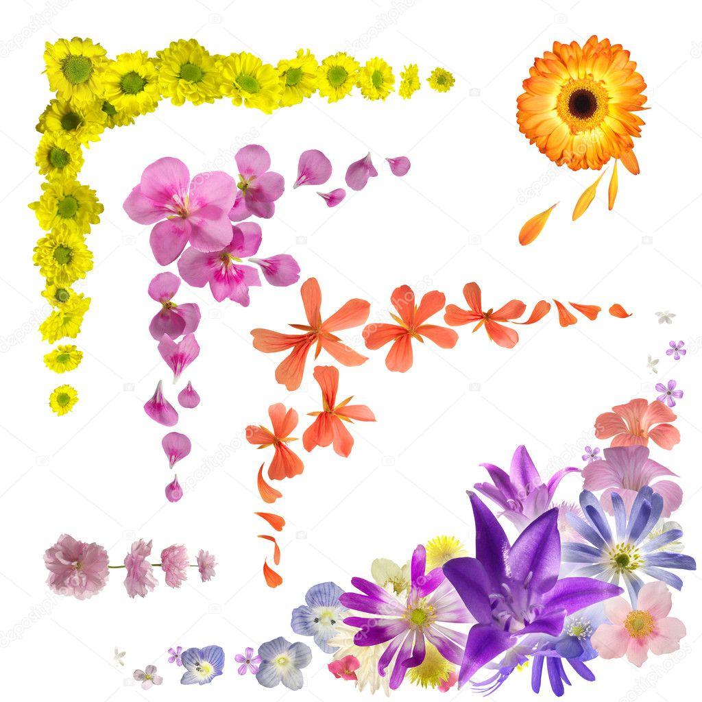Flower bud corner collection