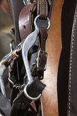 Fotografie detail uzdu koně