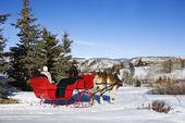 Winter sleigh ride.