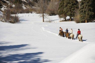 Group horseback riding in winter.