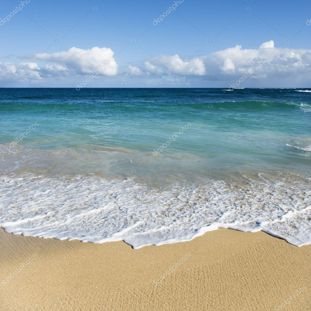 Maui Hawaii Beaches: Stock Photo © Iofoto #9247998