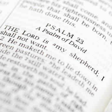 Holy Bible Psalm.
