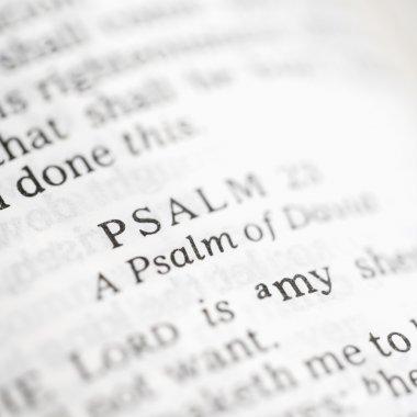 Psalm 23.