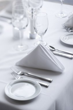 Place Settings on Dining Table