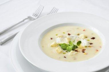 Fancy Bowl of Soup