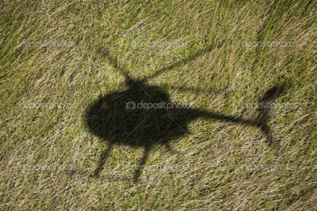 Helicopter shadow on field.