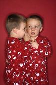 Junge Zwillingsbrüder Flüstern