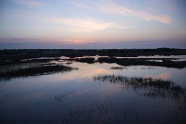 Sky reflecting in marsh.
