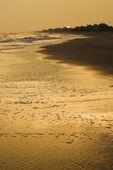 Photo Golden beach at sunset.