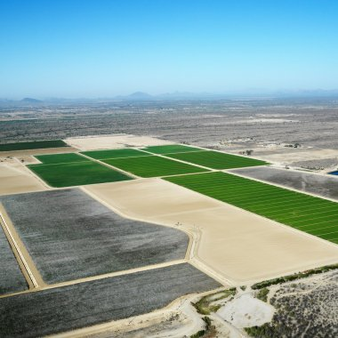 Aerial croplands.