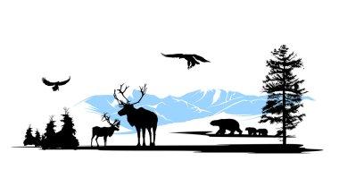 Woods animals