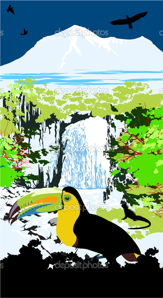 Tucanucu parrot on the waterfall and jungle background