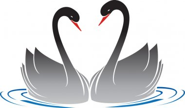 Water swans