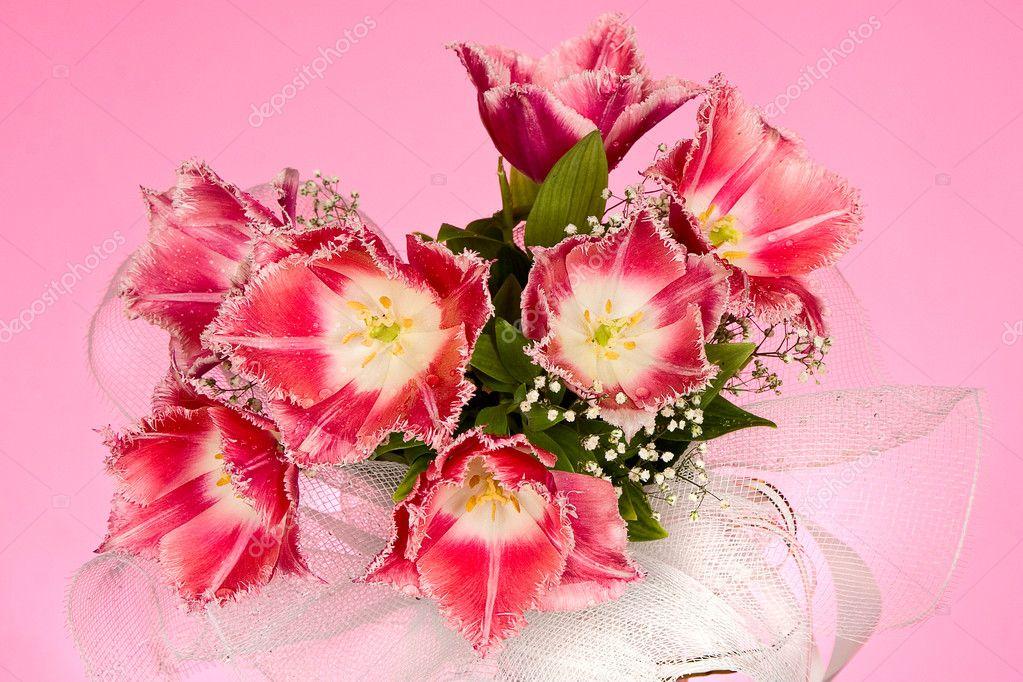 Hochzeitsstrauss Der Tulpen Stockfoto C Artkot 8594856