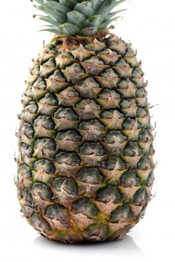 Pineapple isolated on white background. stock vector