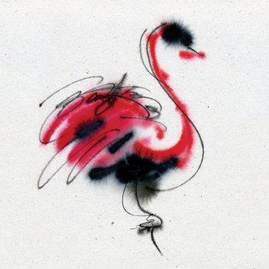 Exotic unusual bird