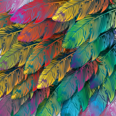 Seamless background of exotic colorful feathers, close up