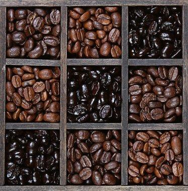 Coffee beans light to dark roast
