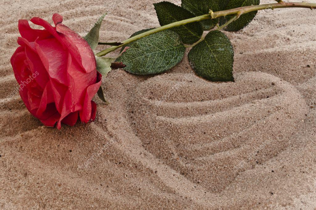 вам картинка роза сердце и песок рынке является одним