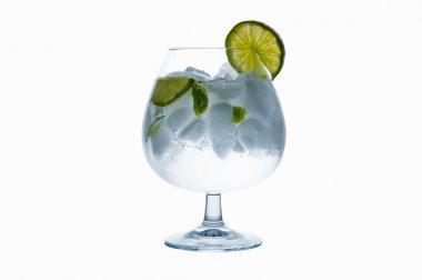 GinTonic or Water Lemon