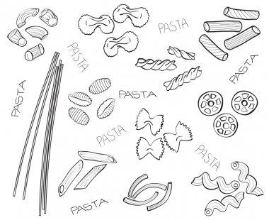 Types of pasta - hand-drawn illustration