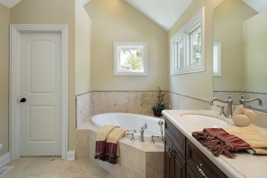 Master bath with tub design area