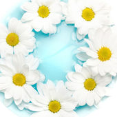 Daisies on blue water